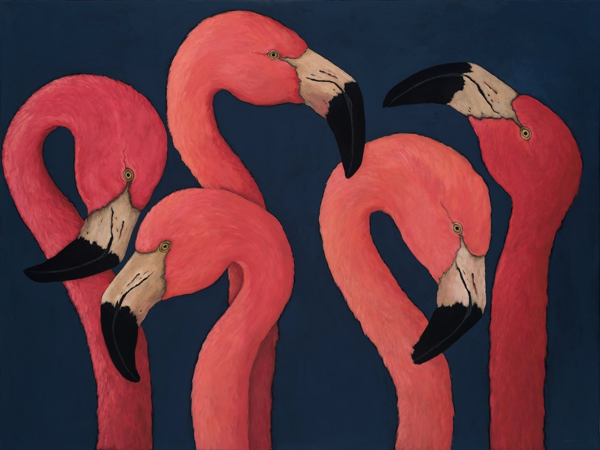 FIVE FLAMINGOS